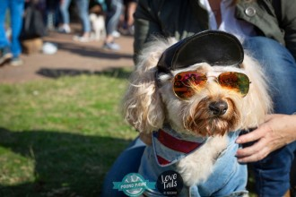 20190518_Bondi_Dog_Day_9177_55_55.jpg